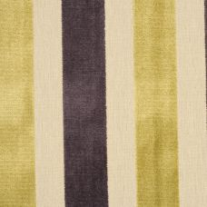 Purple & Gold Velvet Upholstery Fabric - Bardolino 1677