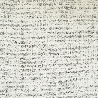Proof Positive Chenille Upholstery Fabric - Arturo 3822