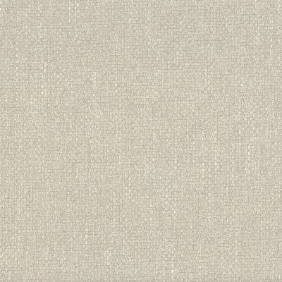 Lime Mortar Velvet Upholstery Fabric - Pronto 3320