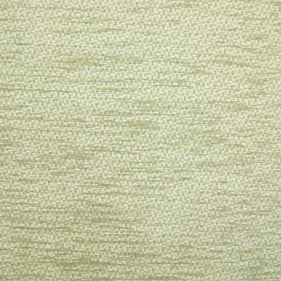 Banks of Green Willow Chenille Upholstery Fabric - Monopoli 2953
