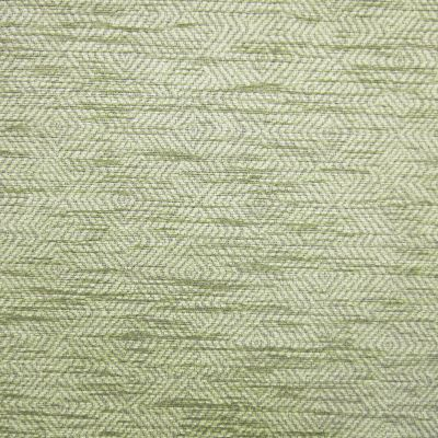 Banks of Green Willow Chenille Upholstery Fabric - Monopoli 2964