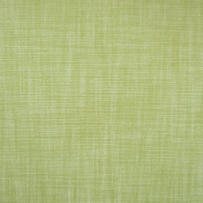 Savannah Plains Cotton Upholstery Fabric - Pastello 2889