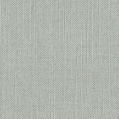Claire de Lune Flat Weave Upholstery Fabric - Topolino 3804
