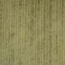 Moss Green Velvet Upholstery Fabric - Assisi 2015